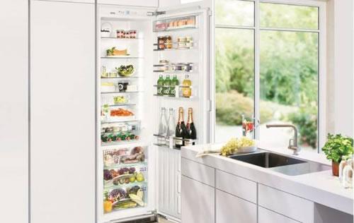 Liebherr嵌入式IKBP 3550冰箱